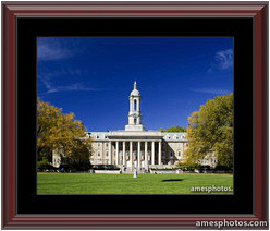 Matted and Framed Print