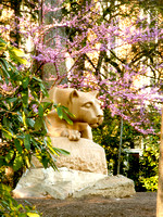 Nittany Lion in Spring, portrait