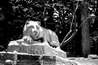 Nittany Lion in Four Seasons - Winter 2015, Night
