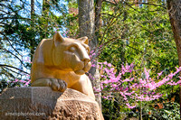 Nittany Lion Shrine wallpaper
