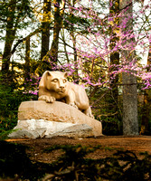 Nittany Lion with Flowers, portrait 2009