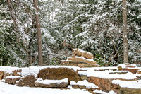 Snow on the New Nittany Lion Shrine - 2013, wide angle