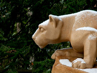 Snowy Nittany Lion profile
