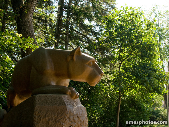 Nittany Lion Statue in June
