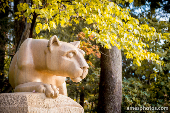 Nittany Lion statue close up, facing right