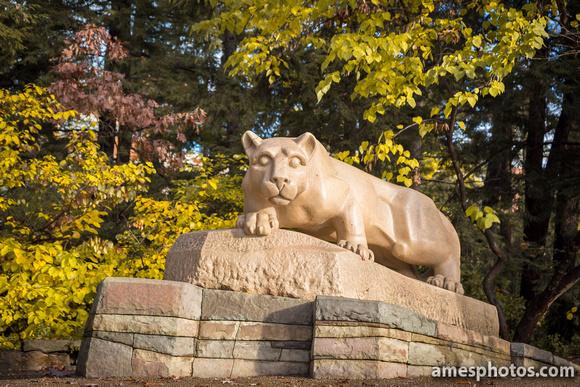 Nittany Lion, October 2015