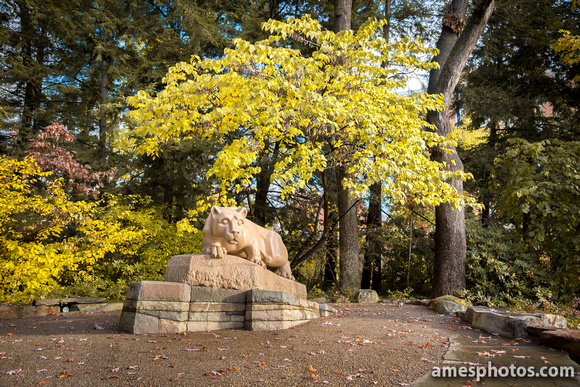 Nittany Lion, Fall 2015 - wide angle, three-quarter view