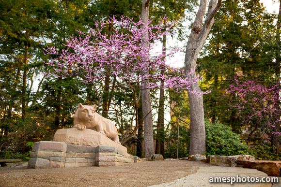 Nittany Lion Shrine April 2016