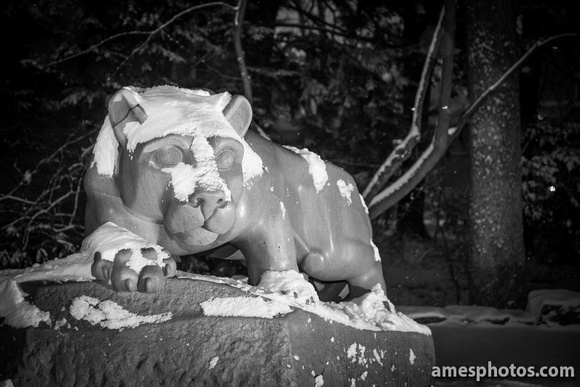NIttany Lion at Night in Winter 2015, Black and White