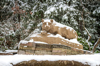 Snow on the New Nittany Lion Shrine - 2013