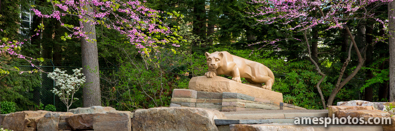 New Nittany Lion with flowers 2014, panorama