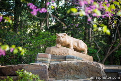 New Nittany Lion with flowers 2014, morning light