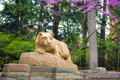 New Nittany Lion - Spring 2014